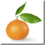 como-elegir-clementinas
