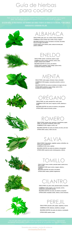 Gu a de hierbas para cocinar infograf a cocina muy facil for Guia mecanica de cocina pdf